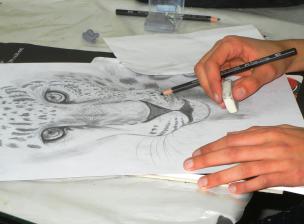 Bleistiftzeichnung zum Thema Panter im Zeichenkurs der Kunstschule Frankfurt Atelier Irene Schuh