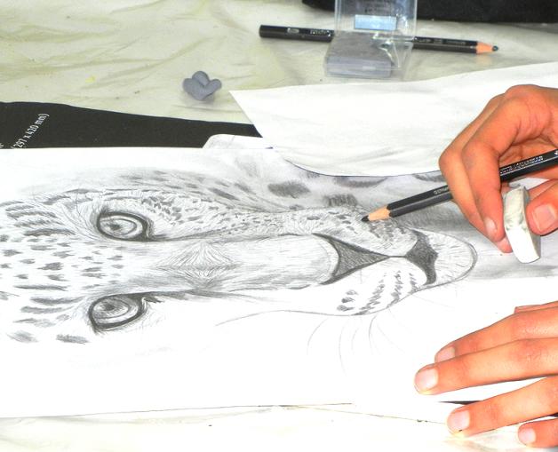 Dies ist eine Bleistiftzeichnung - ein Panter, aus dem Zeichenkurs in der Kunstschule Frankfurt Atelier Irene Schuh