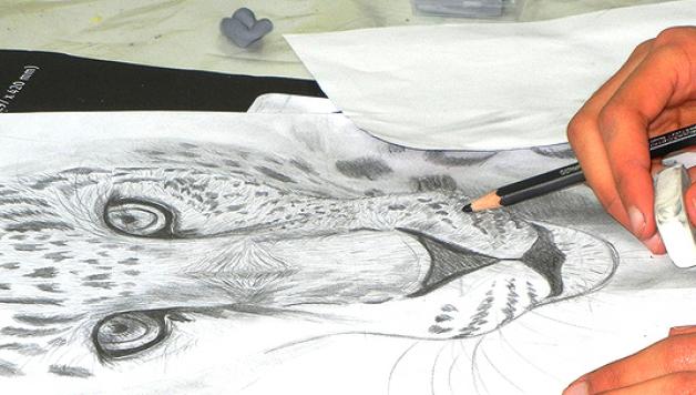 Tiere-zeichen-lernen-Kurs, Bilder-malen-lernen, Gemälde, KUNSTSCHULE-FRANKFURT-ATELIER-IRENE-SCHUH