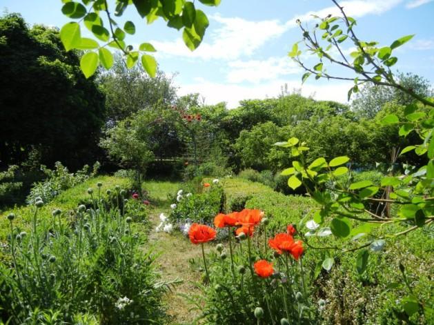 Blick in den Ateliergarten der KUNSTSCHULE FRANKFURT ATELIER IRENE SCHUH. Das Sommer- Kunst-Atelier befindet sich in diesem zauberhaften Garten unter weitem Himmel.