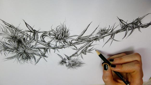Bleistiftzeichnung v. Natascha Szigat in der Kunstschule Frankfurt Atelier Irene Schuh
