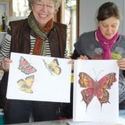 Wie zeichnet man Schmetterlinge, im Atelier Irene Schuh Frankfurt Kunstschule